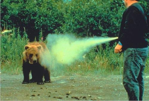 bear-attack-bear-spray